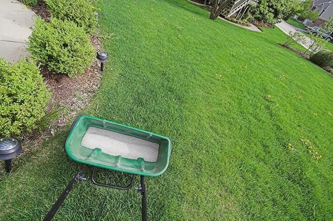 Refresh A Commercial Landscape With a Fertilization Program