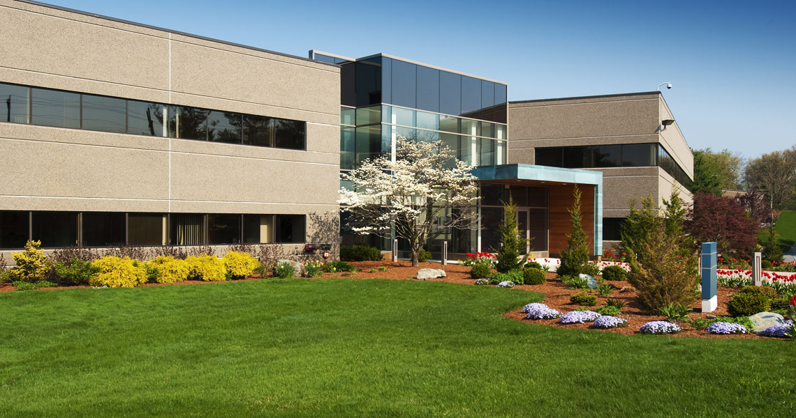 Commercial Lawn Maintenance - Taking Care of Pests
