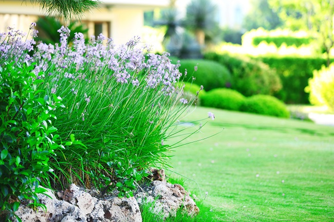Three Benefits of Commercial Property Landscaping Updates