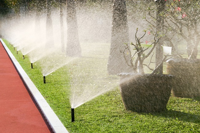 Commercial Landscaping: 3 Lawn Care Myths Busted