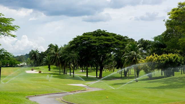 3 Reasons Why Commercial Irrigation Is A Must
