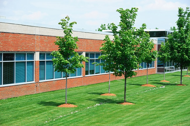 Why Proper Landscaping Can Make or Break Your Business