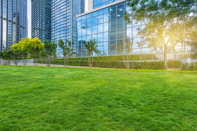 Trust Metro Lawn Care for Your Commercial Landscape Construction Project