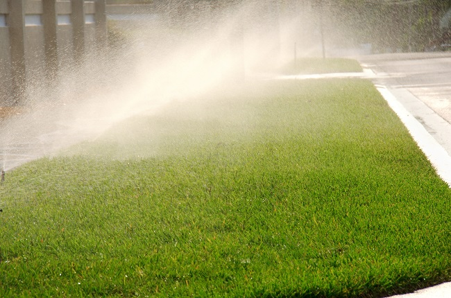 The Benefits of Having a Commercial Irrigation System