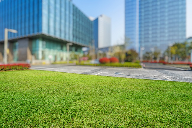Why Lawn Maintenance Is Important For Your Business