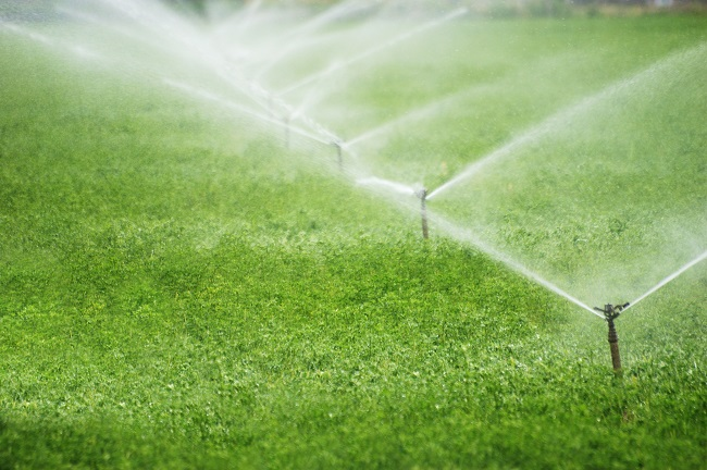 How a Smart Irrigation System Saves You Money