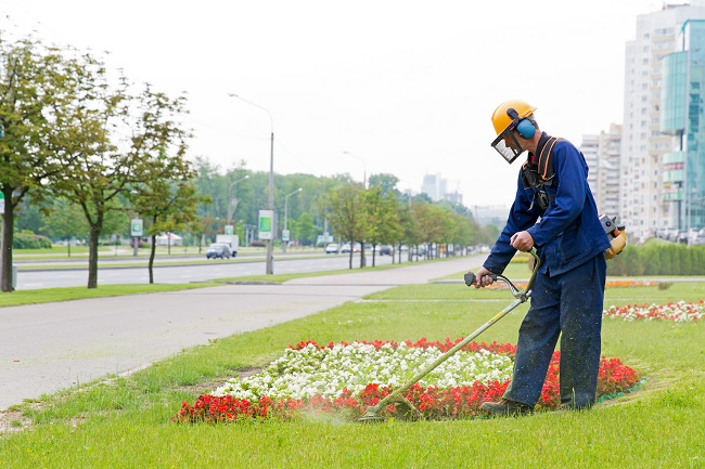 Readying Your Commercial Landscaping for Summer