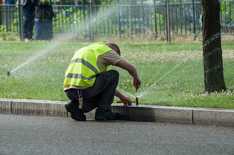 3 Ways A Professional Can Help You With Your Commercial Irrigation